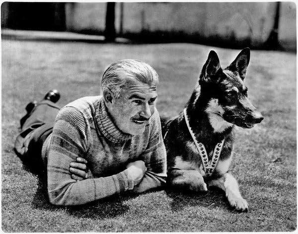 Rin-Tin-Tin foi um cães mais famosos do cinema