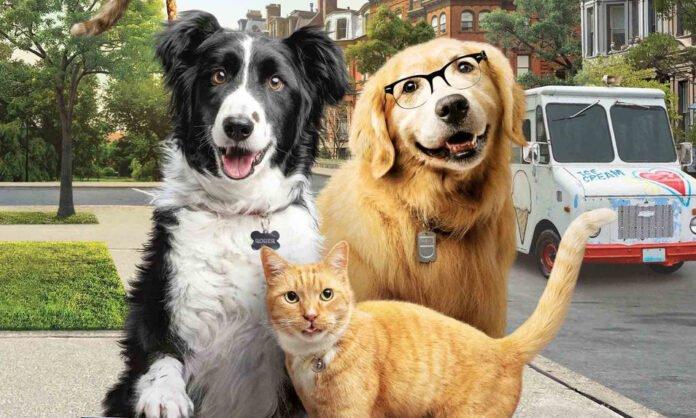 Como Cães e Gatos integra a enorme lista de filmes atuais de animais de estimação