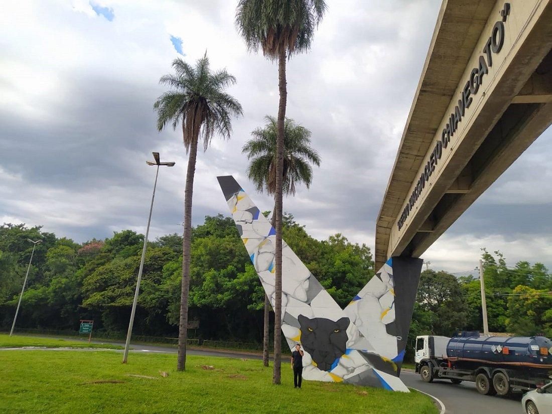 Intervenção artística tem o título 'O Rio Preto das Onças'