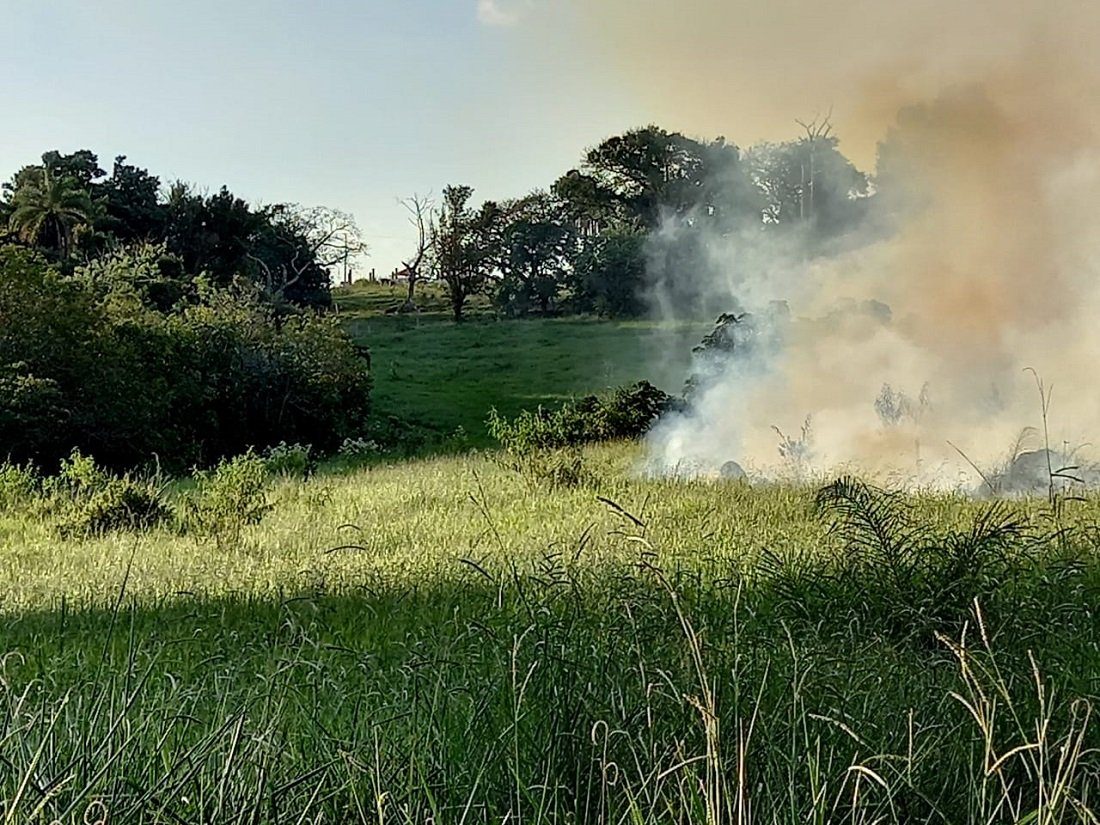 Cidade registrou 109 focos de incêndio neste ano