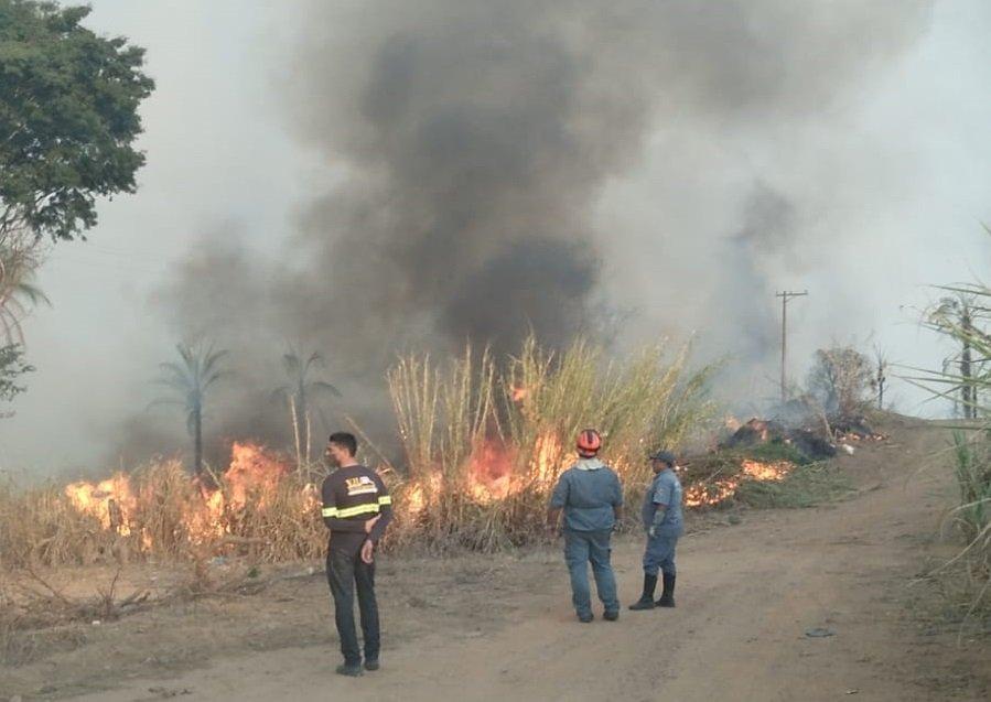Bombeiros observam a área de foto antes de iniciar os trabalhos (Foto Defesa Civil)