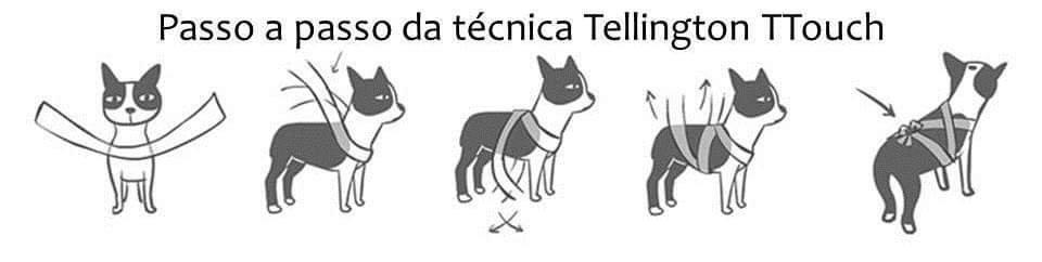 Técnica usada para tranquilizar o animal