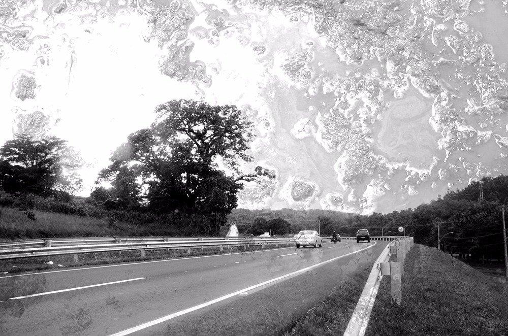 Figueira assombrada existe até hoje na estrada para Pedreira