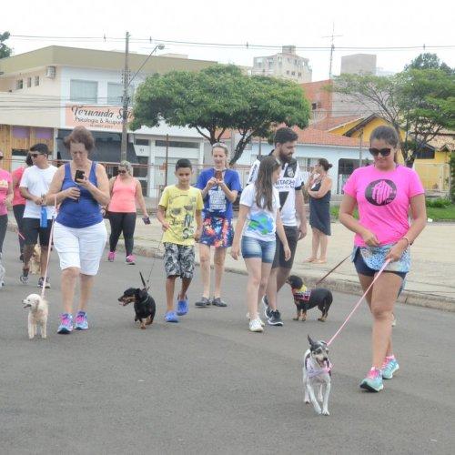 Evento acontece no Parque Santa Maria e proposta é ajudar a ong Xodó de Bicho